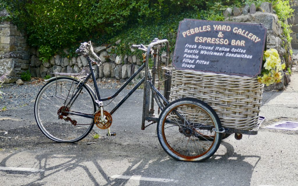 St. David's Peninsula Bike