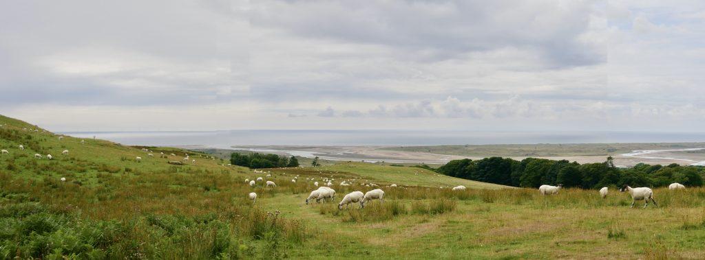 Ravenglass Coastal Tidal Flats